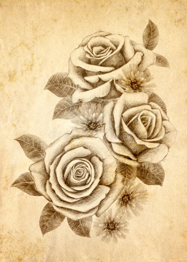 Download Freehand Drawing Rose 02 Stock Images - Image: 19168744