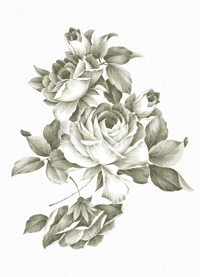 Download Freehand drawing rose. stock illustration. Illustration of painting - 17634443
