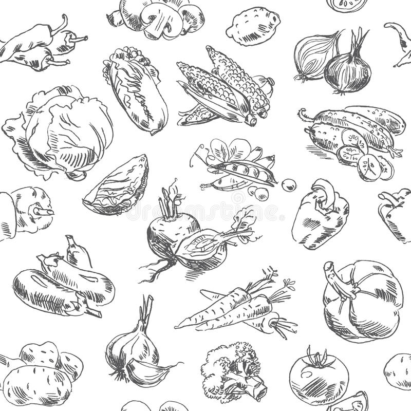 Freehand drawing vegetables. Seamless pattern royalty free illustration