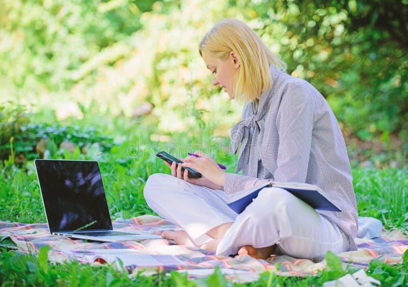Freelancer acertado convertido Aire libre de manejo del negocio La mujer con el ordenador portátil sienta el prado de la hierba S imágenes de archivo libres de regalías