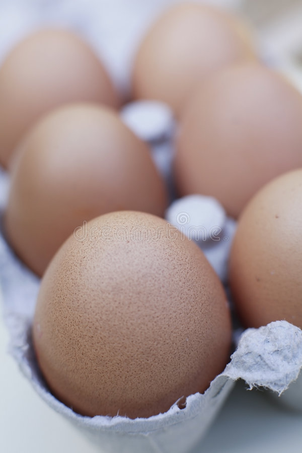 Freerange organic egg. Six organic freerange eggs in cardboard egg box royalty free stock images