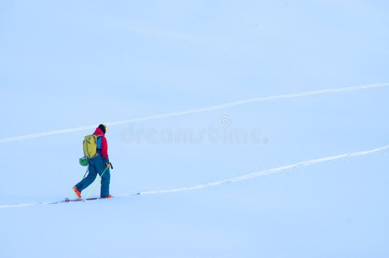 Freeride-Ski in den Transsilvanische Alpen lizenzfreie stockfotografie