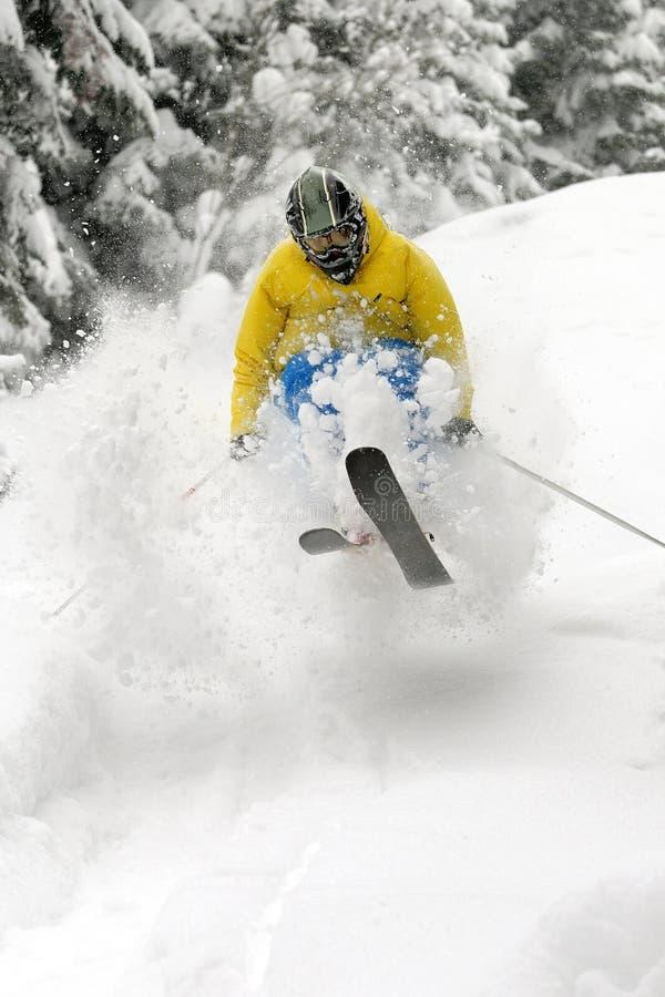 Freeride Skier. Royalty Free Stock Image