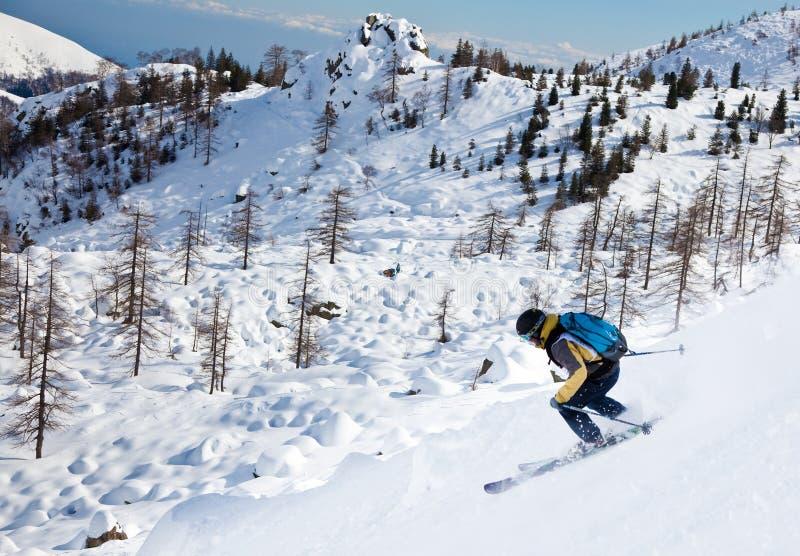 Freeride Skifahrer lizenzfreie stockfotografie