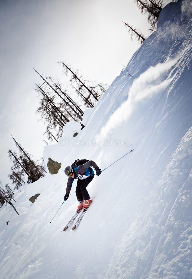 Freeride Skifahrer stockbild