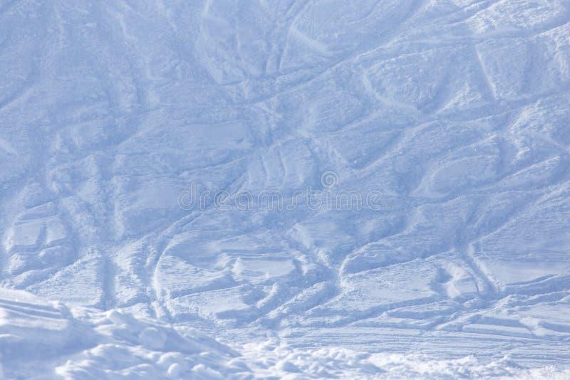Freeride spårar pudrar på snow royaltyfri fotografi