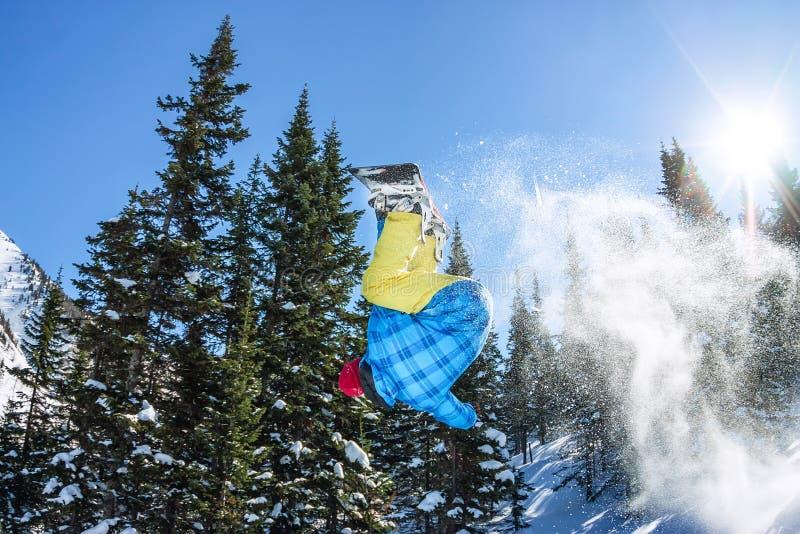 Freerider banhoppning för Snowboarder från en snöramp i solen på en bakgrund av skogen och berg royaltyfri fotografi