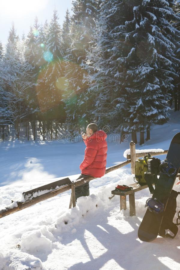 Freerider rest in snowy spruce forest at sun winter day stock photo