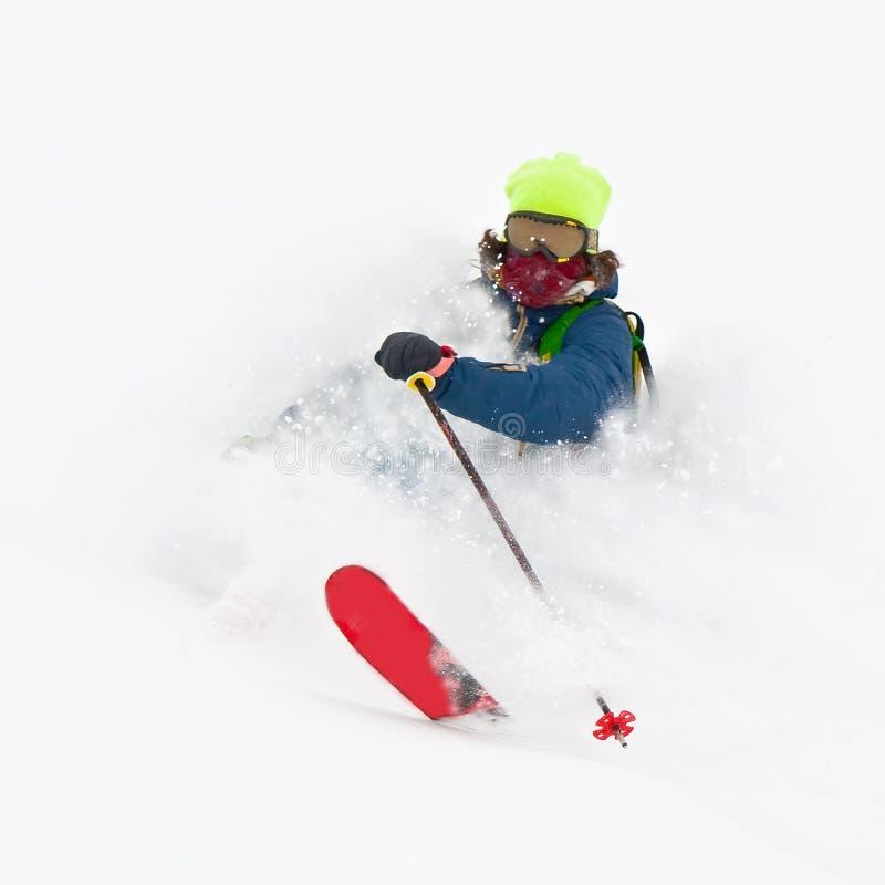 Freerider in una polvere della neve immagine stock