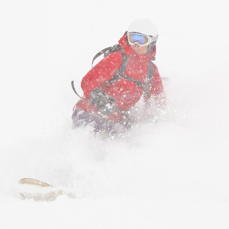 Freerider in una polvere della neve fotografia stock libera da diritti