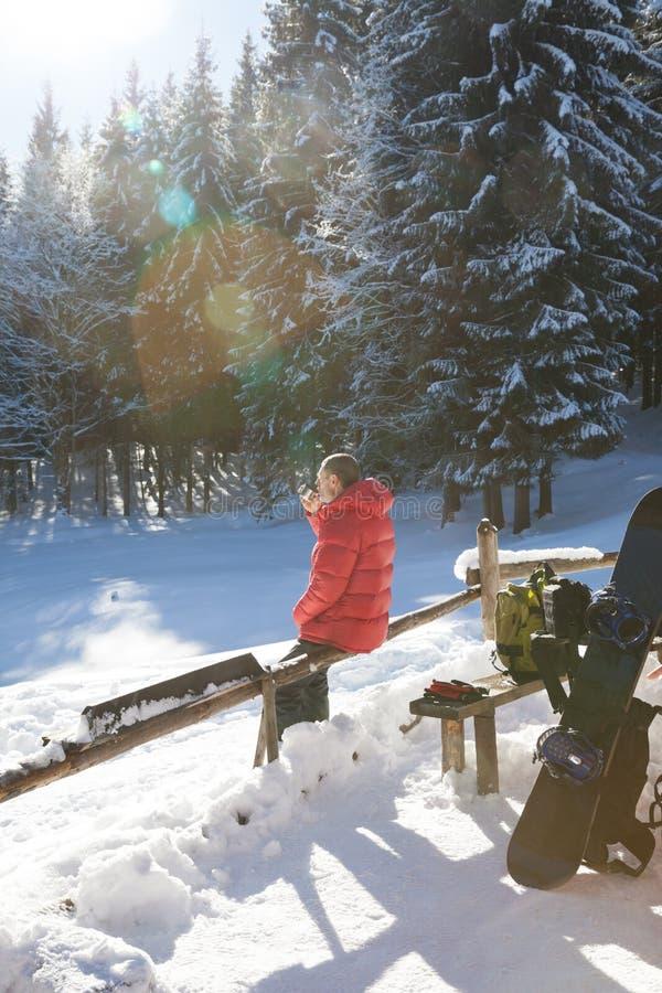Freerider vila i snöig prydlig skog på solvinterdagen arkivfoto