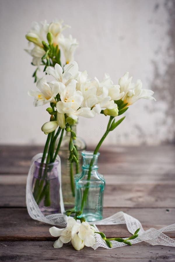 freesia λουλουδιών στοκ εικόνες με δικαίωμα ελεύθερης χρήσης