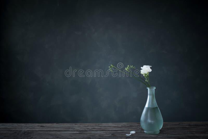 freesia dans un vase en verre sur fond sombre image libre de droits