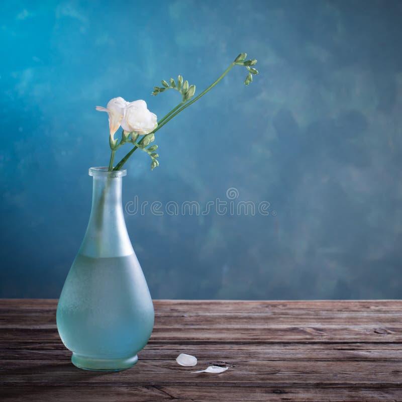 freesia dans un vase en verre sur fond sombre images stock
