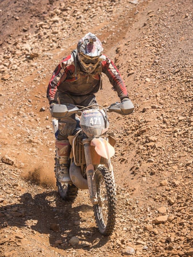 Freestyle motocross del MX fotografie stock