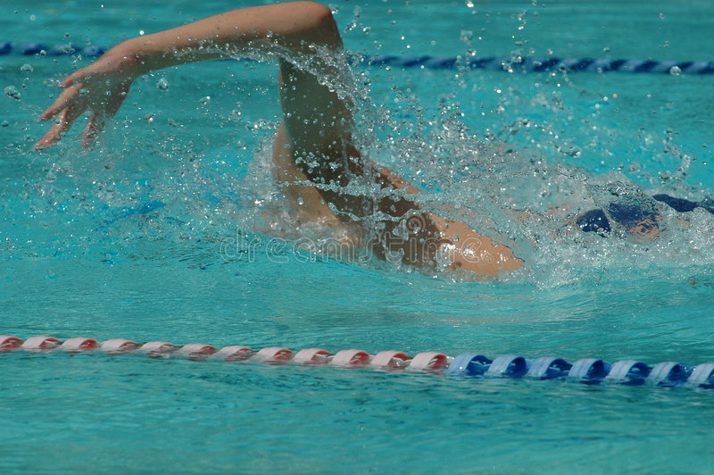 Freestyle swimmer in 100m race stock image