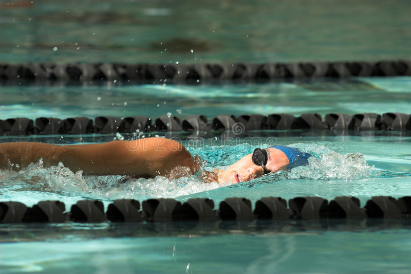 Freestyle swimmer stock image