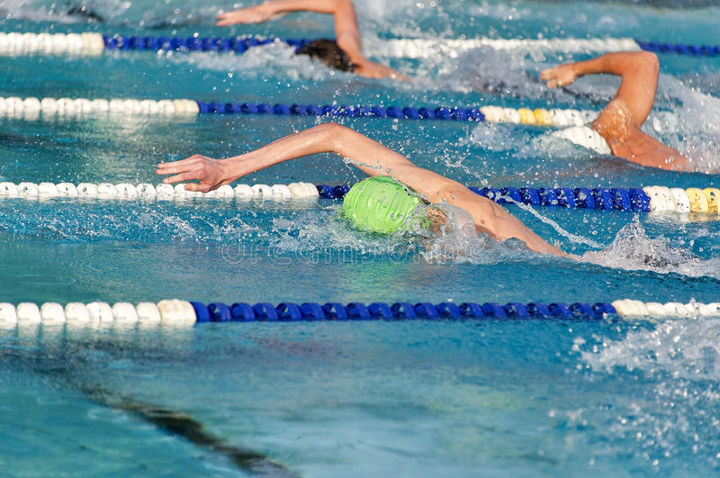 Freestyle swimmers in a close race royalty free stock photos