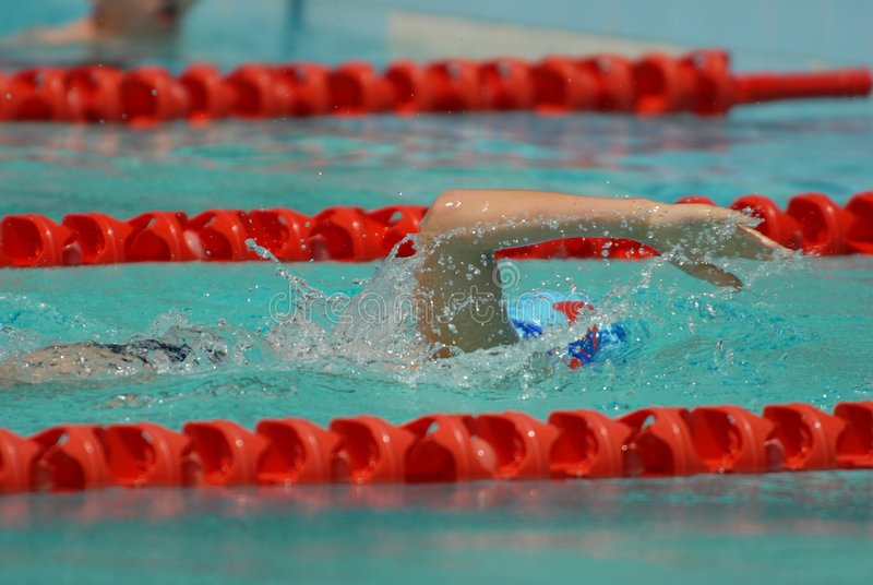 Freestyle Swimming Race Stock Images
