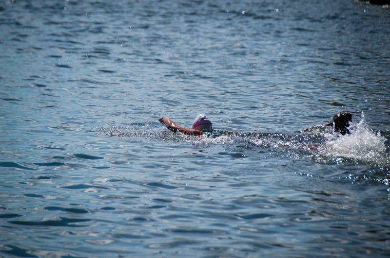 Freestyle vooraan kruipt zwemstijl in het meer royalty-vrije stock fotografie