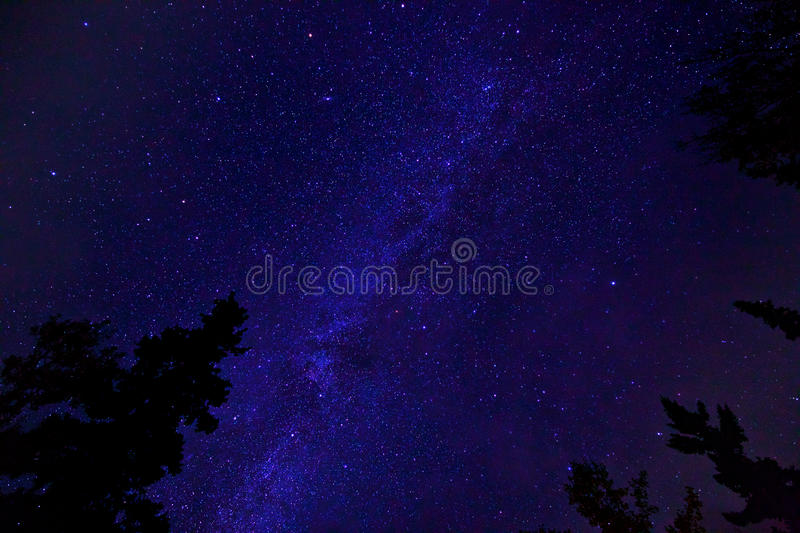 Freeze. Starry night over Green Lake royalty free stock photos