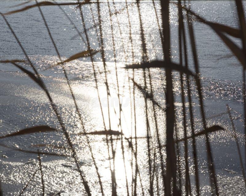 Freezing lake surface