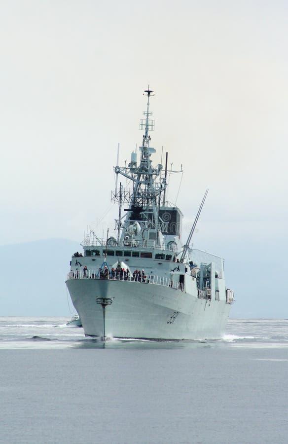 fregata zdjęcia stock