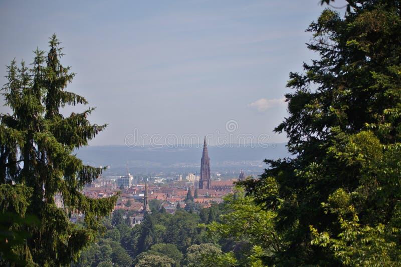 Freiburgcityscape met Munster met bomen wordt ontworpen die royalty-vrije stock afbeeldingen