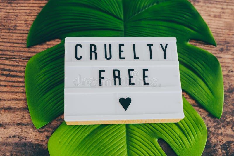 Freie Mitteilung der Grausamkeit auf lightbox mit Blatt und Holz, Konzept von Ethik des strengen Vegetariers lizenzfreies stockfoto