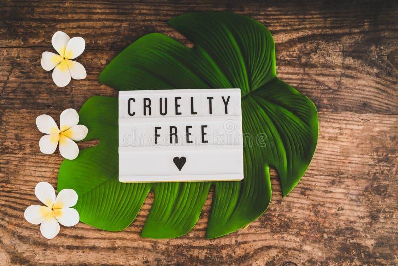 Freie Mitteilung der Grausamkeit auf Produkten und Ethik lightbox strengen Vegetariers lizenzfreie stockfotografie