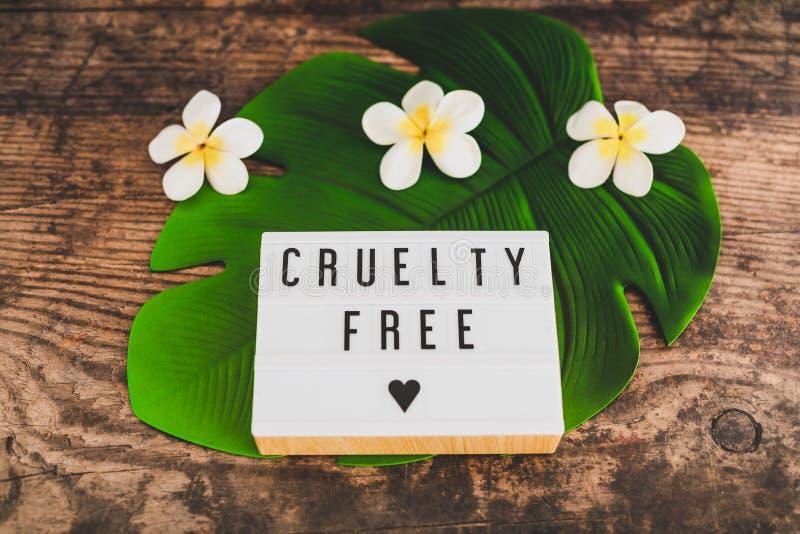 Freie Mitteilung der Grausamkeit auf Produkten und Ethik lightbox strengen Vegetariers lizenzfreies stockbild
