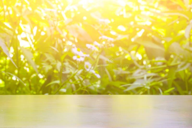 Freier Raum für Ihre Dekoration auf grünem undeutlichem natürlichem Hintergrund im Sonnenlicht lizenzfreies stockfoto