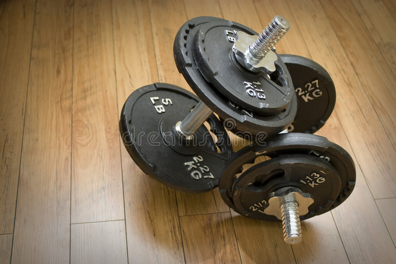 Freies Gewicht Dumbells stockbild