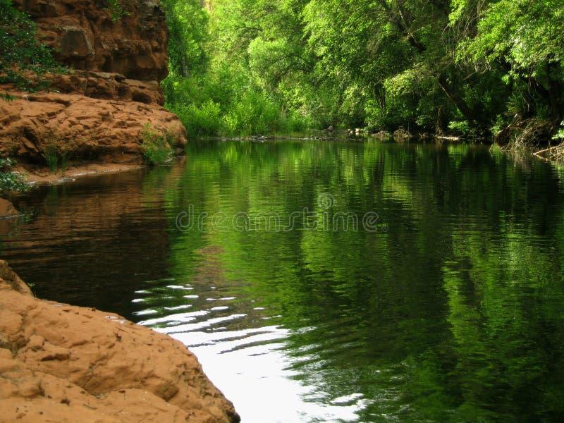 Freies Nebenfluss-Schwimmen-Loch stockfotos