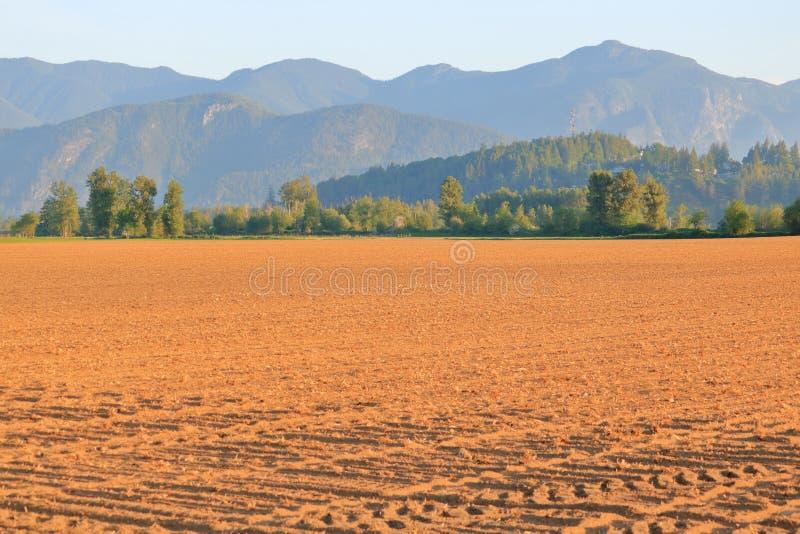 Freigebiger Fraser Valley Agricultural Land stockfoto