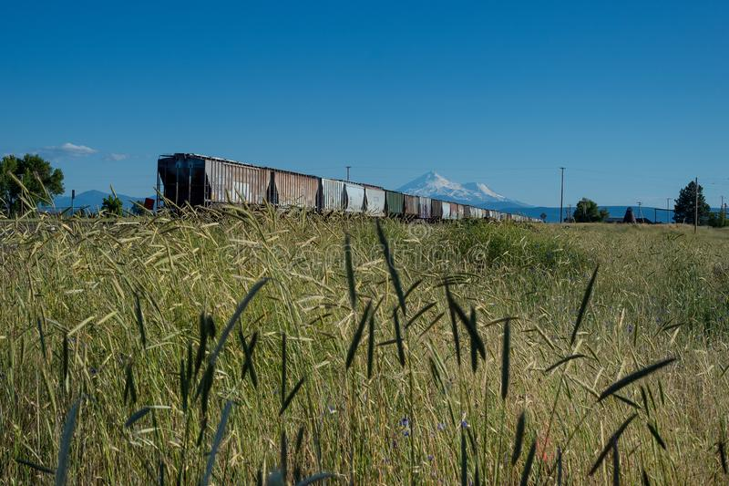 Freight train near Mt. Shasta in Dorris, California royalty free stock photo