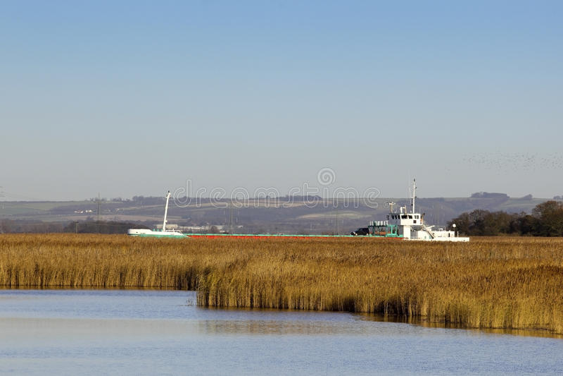 Freighter Sailing Through The Reeds Stock Photo