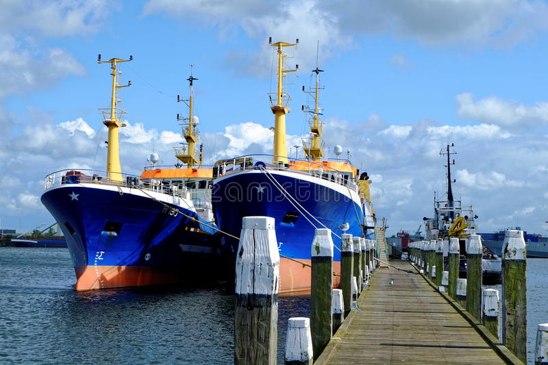 Freighters at pier stock image