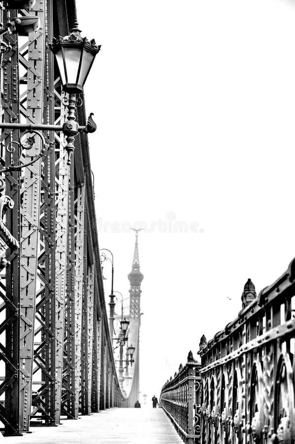 Freiheitsbrücke von Budapest stockfoto