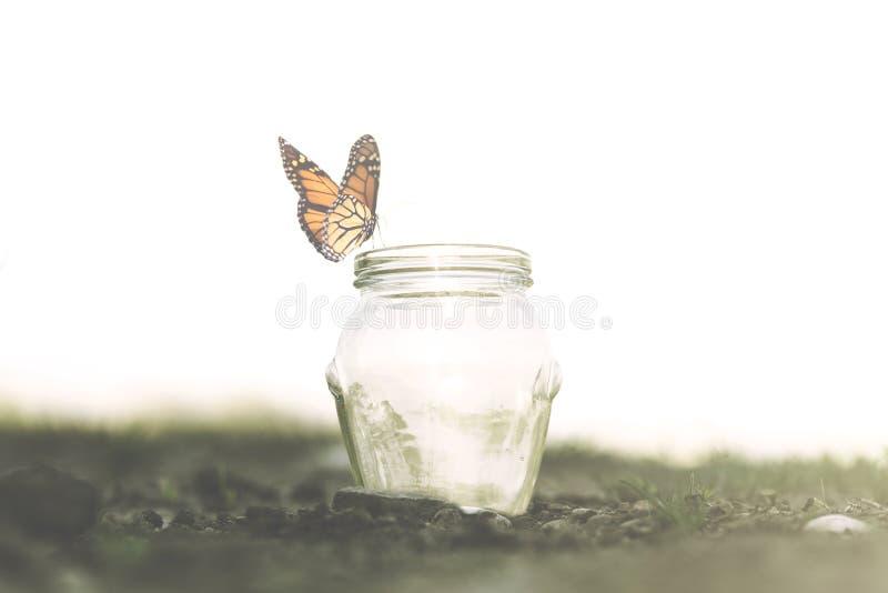 Freiheitskonzept eines bunten Schmetterlinges steht auf ihrer Falle still stockbild