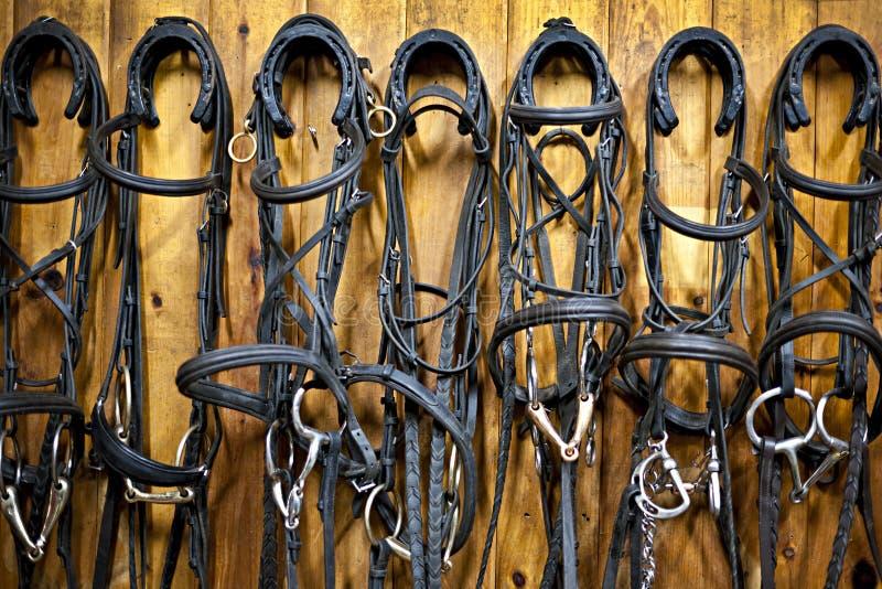 Freins de cheval accrochant dans l'écurie photographie stock libre de droits