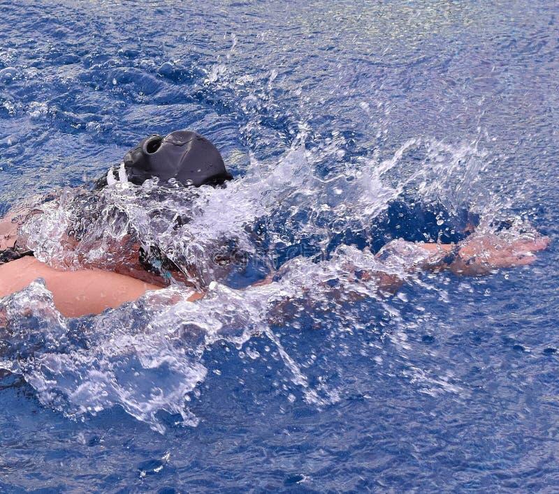Freistilschwimmen stockbilder