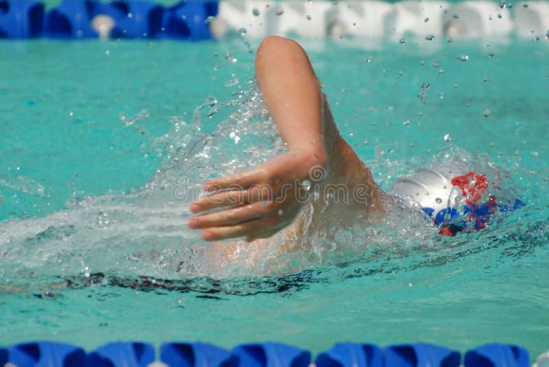 Freistilschwimmer stockfoto