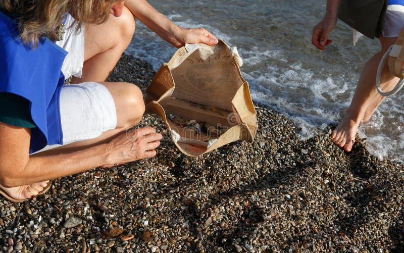 Freiwillige wählen Zigarettenstummel und -plastik vom Stranddetail über Tasche mit Abfall aus stockfotos