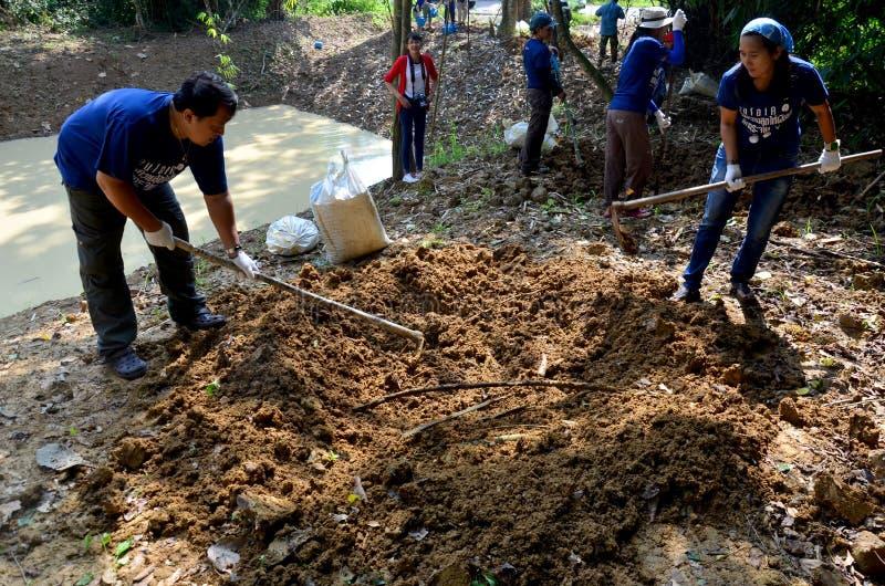 Freiwilliger der thailändischen Leute lassen Lecksteine für Tiere bei PanoenThung essen lizenzfreies stockbild