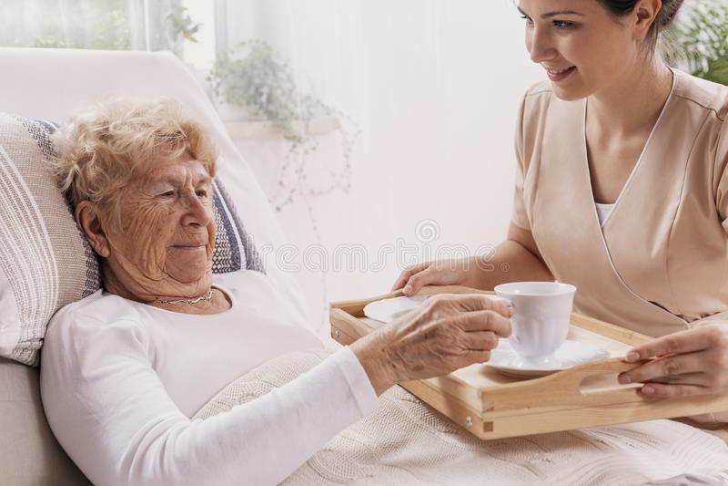 Freiwilliger in dienendem Kaffee der beige Uniform zum älteren weiblichen Patienten lizenzfreie stockbilder