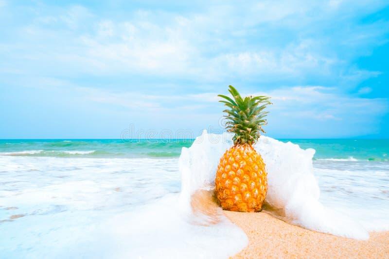 Freizeit im Sommer- und Sommerferienkonzept lizenzfreies stockfoto