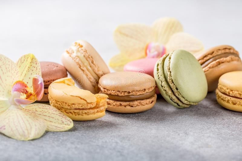 French assorted macarons stock photos