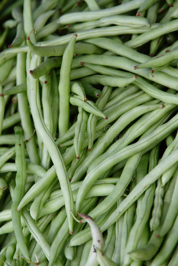 Download French Beans Royalty Free Stock Photo - Image: 18037725
