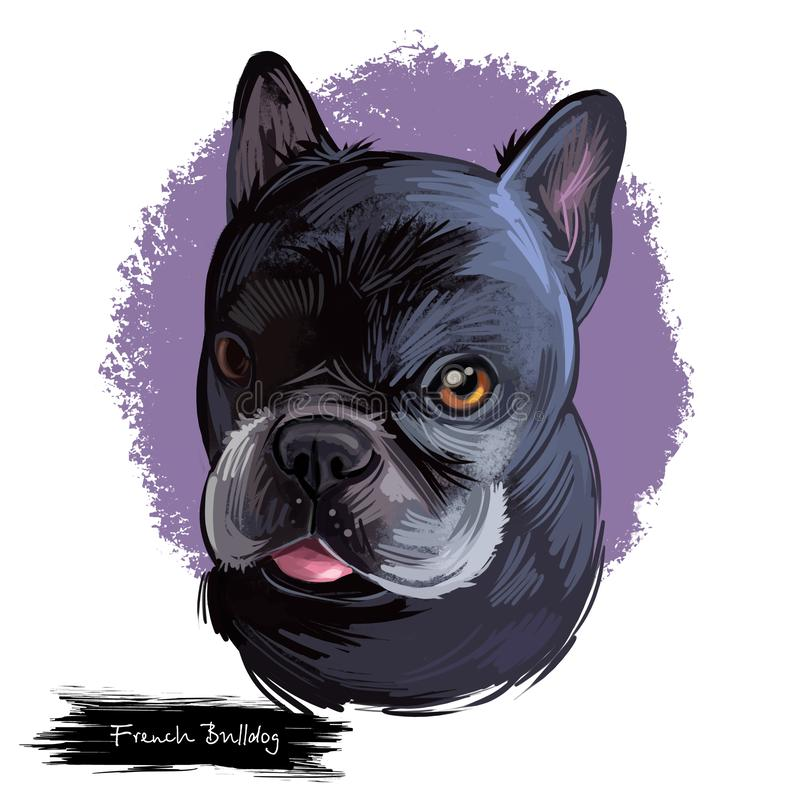 French Bulldog dog breed digital art illustration isolated on white. Popular puppy portrait with text. Cute pet hand royalty free illustration